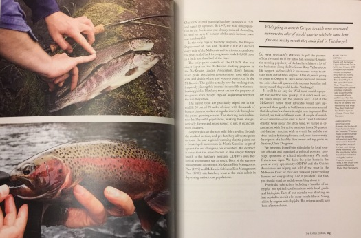 Flyfish Journal